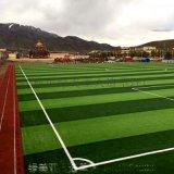 綠美亞模擬草坪 人造草坪 幼兒園草坪  人工草坪