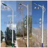 河北路灯杆厂家供应灯杆造型灯