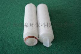 10寸PTFE折叠滤芯