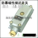 防爆磁性开关KYCJ-1ZKYCJ-1F防护等级IP65