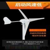 500瓦微型风力发电机三相永磁直驱24V/48V