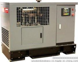 30KW三相稀土永磁柴油发电机组 国家专利技术发电机+进口动力