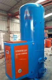 河北大城县优质生物质锅炉生产厂家型号规格