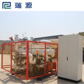 瑞源厂家直销高品质 高温双泵反应釜 夹层加热电加热