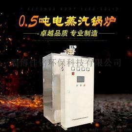 淄博佳铭LDR0.5-0.7电加热蒸汽锅炉厂家 大型工业电蒸汽锅炉 蒸汽发生器