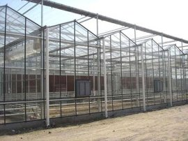 北京中荷润农12-8智能玻璃连栋温室,13年温室生产建设安装经验。