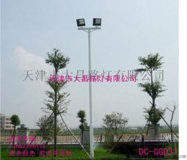 热销高杆灯广场道路球场灯15米高杆照明路灯