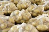 全自动商超土豆包装流水线
