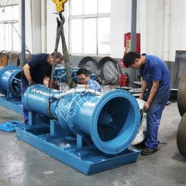 350QSZ中吸简易式潜水轴流泵