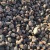 本格供应供应用天然鹅卵石 黑色鹅卵石3-5cm