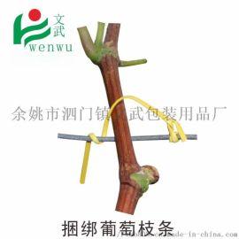 绑枝电镀锌铁丝包塑园林绑扎带枝丝绑葡萄枝条用的扎丝
