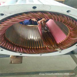 直驱永磁式无刷交流发电机低速永磁发电机生产厂家