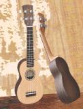 臨汾悠樂美吉他專賣店 吉他廠家特價批發