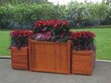 戶外設施防腐木花槽 道路種植樹箱 花箱圖片