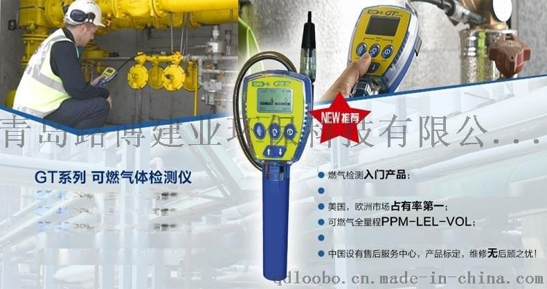 全量程的可燃氣體檢測報 儀GT-44