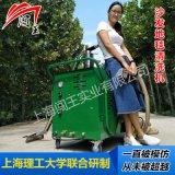 闯王CWRS-02沙发地毯蒸汽清洗机厂家