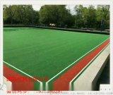 河北草坪 模擬草坪體育場人造草坪