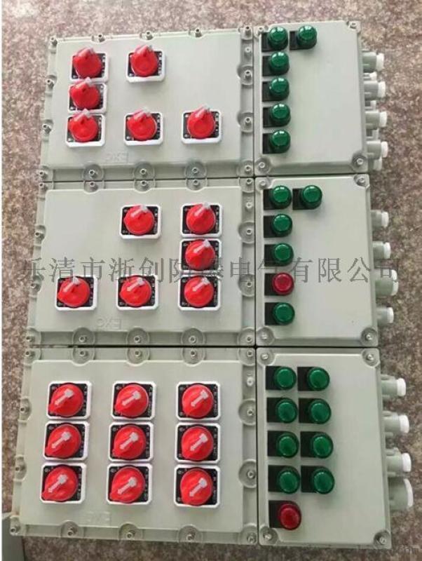 IIC级防爆照明动力配电箱内装施耐德元件