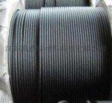 供應鍍鋅、光面鋼絲繩6*7+FC,6*7+IWC