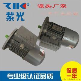 清華紫光BMAVF7114變頻剎車電動機