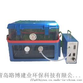 LB-8L路博自产真空箱气体采样器