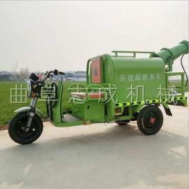 志成电动雾炮除尘车 电动三轮道路清洗车