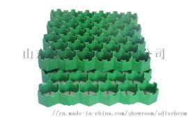 塑料植草格现货供应