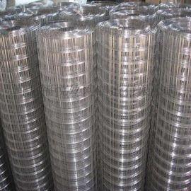 最优质的 镀锌电焊网 建筑钢丝网 浇筑铁丝网