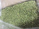 贡菜出口贸易厂家|合肥元政农林