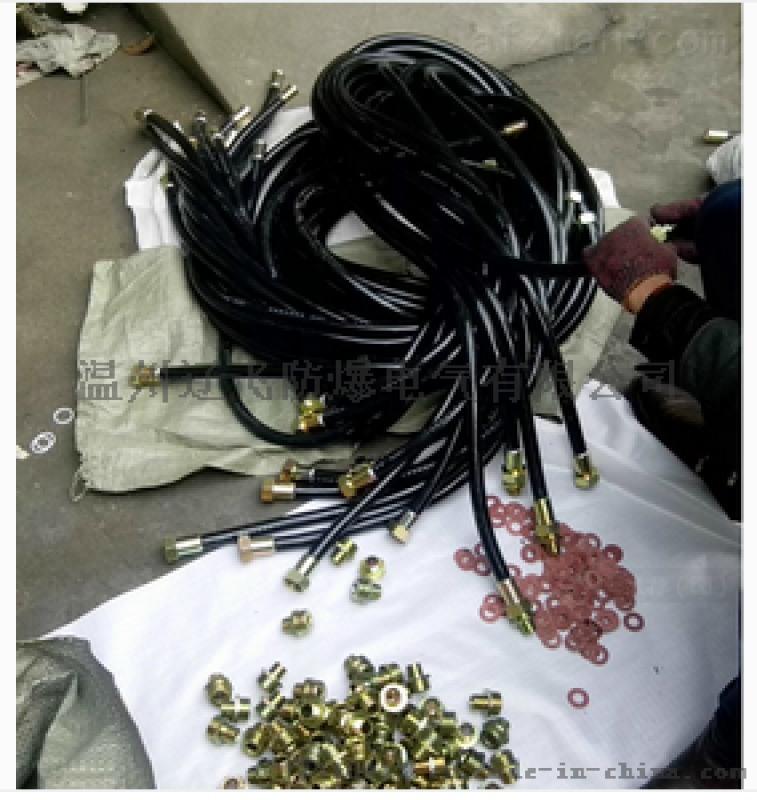 不锈钢 BNG15*700mm防爆挠性连接管