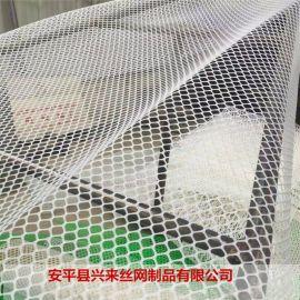 浙江塑料网 资讯塑料网 育雏小鸡网床设计图