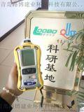 一有害氣體/射線檢測儀無線功能