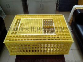 天仕利750*550*270塑料成鸡运输鸡笼子