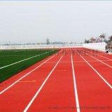 广州自结纹塑胶跑道,广州塑胶跑道材料,广州自结纹塑胶跑道价格