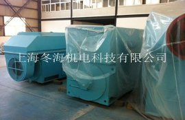6KV高压稀土永磁电机 (TYX3552-4-200KW)