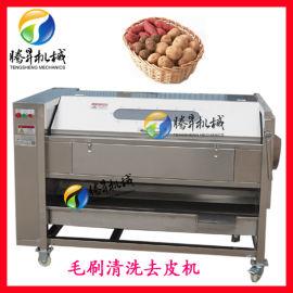 新款土豆去皮清洗机,毛刷土豆清洗去皮机