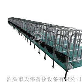 新型养殖干净卫生提高成活率母猪保胎栏,复合板定位栏
