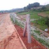 三峡河道绳索护栏,钢绞线护栏厂家,钢绞线护栏生产