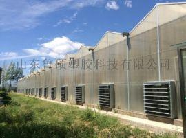 淄博双层透明pc阳光板厂家