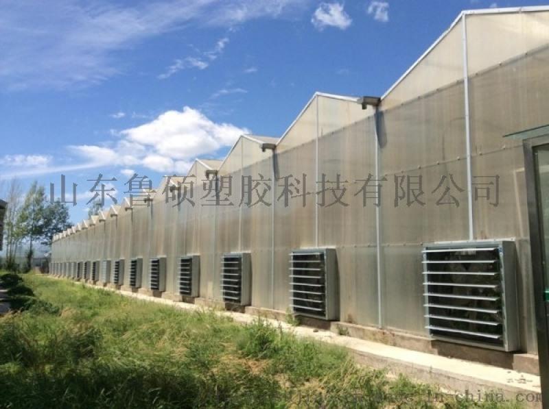 淄博雙層透明pc陽光板廠家