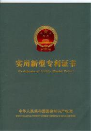 专利申请,美国专利申请,国内外专利申请