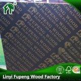建筑模板 /杨木芯模板/松木芯模板