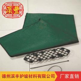 专业绿化环保生态袋 道路绿化用生态袋 山东生态袋
