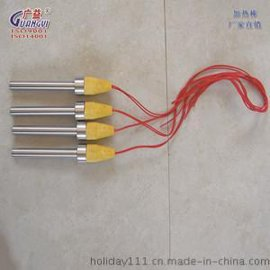 江苏瑞源 厂家直销  非标定制 电加热棒