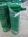 安平荷兰网养殖围栏铁丝网散养鸡鸭围网绿色铁丝卷网浸塑荷兰网围网生产厂家报价**批发价