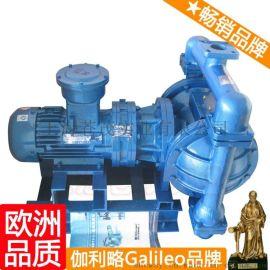 DBY电动隔膜泵 电动隔膜泵厂家 伽利略电动隔膜泵 艺