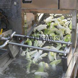 喷淋式东北白菜清洗机 小型酸菜清洗机厂家