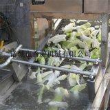噴淋式東北白菜清洗機 小型酸菜清洗機廠家
