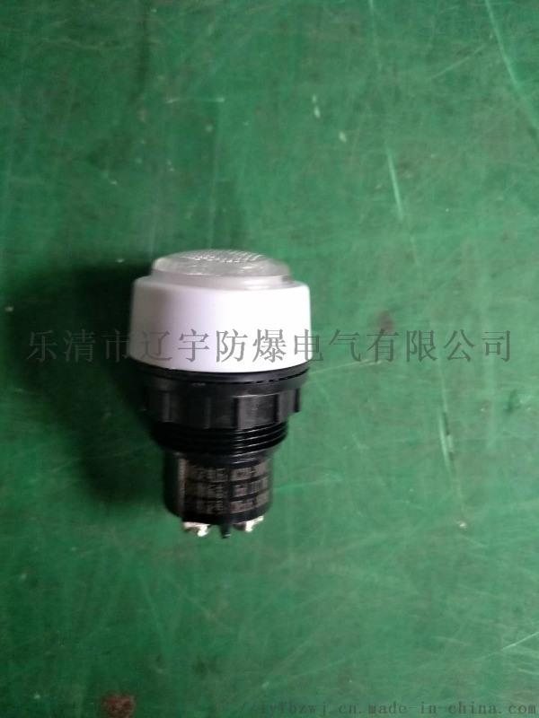 防爆信号灯 白色220/380V现货供应 指示灯