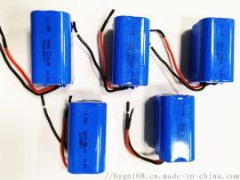 14.8V 2200mAh 18650电池组